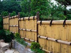 Pics Photos - Privacy Backyard
