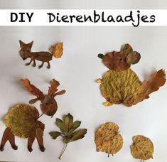 kinderen, herfst, vakantie, knutselen, idee, tips, bladeren, bos, kastanje, beukenootje, eikel, boom, bomen, rood, geel, groen, bruin, regen, dag, vervelen, activiteit, dingen, doen, maken, diy, paddenstoelen, koud, buiten, spelen Fall Crafts For Kids, Diy For Kids, Crafts To Make, Arts And Crafts, Kid Crafts, School Bo, Diy Camping, Craft Materials, Nature Crafts