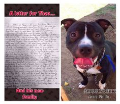 Dog surrendered to animal control with heartfelt note from owner