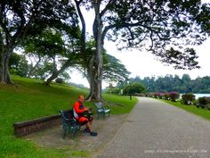 MacRitchie Reservoir Park, Singapore