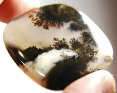 Landscape-Dendritic-Moss-Agate-Cabochon
