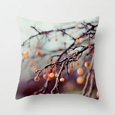 sale Nature Photography - Marzipan photograph - dreamy berries winter branches holiday home decor sale Texas And Oklahoma, West Texas, Tree Quotes, Bare Tree, Marzipan, Nature Photography, Winter Photography, Photography Ideas, Canvas Wall Art