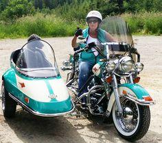 your motorcycles maryann duffeys doggie sidecar