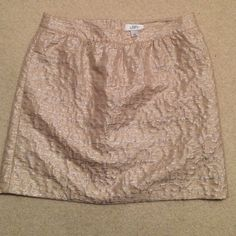 Ann Taylor Loft skirt Ann Taylor Loft skirt size 10. Never worn but no tags. Offers welcome! Ann Taylor Skirts