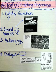 Fabulous site with writing anchor charts for the common core, non-fiction and more.