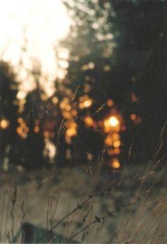 •♥•• Love Autumn Days ••♥•.
