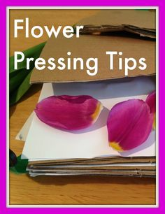 The Simple Art of Flower Pressing #flowerpressing #simplethings