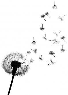 Tattoo idea. I love dandelions.