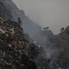 On top of polluted air and water, New Delhi is being forced to grapple with trash dumps growing so large that they are killing people. Delhi Pollution, Trash Dump, Sewage System, New Delhi, India, Slums, The Locals, Tower, Mountains