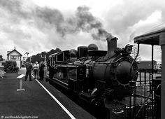 Vintage train II, Auckland Daily Photo, Lachezar Steam Locomotive, Daily Photo, Auckland, Vintage Photos, New Zealand, Trains, Photography, Vintage Photography, Photograph