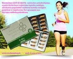 CoQ10 / Koenzimas 30 kapsulių - maisto papildas Santegra JAV. Koenzimas Q10 (CoQ10) - natūralus antioksidantas, esantis kiekvienos organizmo ląstelės sudėtyje, atliekantis pagrindinį vaidmenį ląstelių energijos gamyboje ir reguliavime bei apsaugoje nuo laisvųjų radikalų pakenkimų.