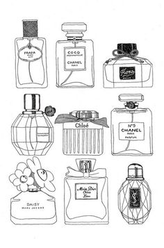 couture perfume bottle ink drawings