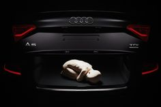 """Campaign for event - """"Breakfast with AUDI"""" Photo: BoysPlayNice.com"""