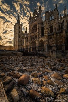 Barcelona Cathedral, Architecture, Building, Landscapes, Travel, World, Mosque, Temples, Lion Pictures