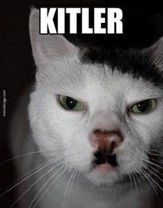 If Hitler was a cat