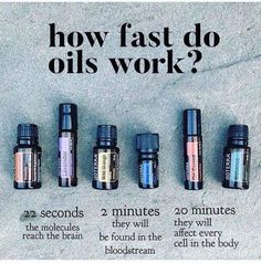 oil doterra How fast do essential oils work? doTERRA How fast do essential oils work? Essential Oils For Colds, Essential Oils Guide, Essential Oil Diffuser Blends, Natural Essential Oils, Cedarwood Essential Oil Uses, Immunity Essential Oils, Copaiba Essential Oil, Therapeutic Grade Essential Oils, Healing Oils