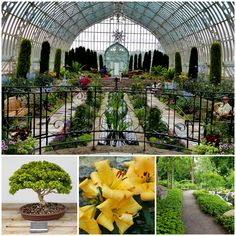Best things to do in downtown St. Paul include a visit to the Como Conservatory. With over 100 years of history, the Como Park is a must-see in Saint Paul, Minnesota.