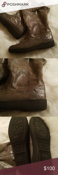 Coach Tanesha EUC boots size 11 dark silver pewter Coach Tanesha EUC boots size 11  Crafted in metallic suede with a beautiful shimmer and fitted with classic Coach hardware, this luxuriously simple, all-weather design is finished with a sturdy rubber sole and a plush, warm shearling lining.  Dark silver or pewter Coach Shoes Winter & Rain Boots