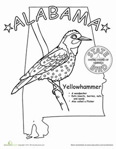 Alabama State Bird Coloring PagesColoring