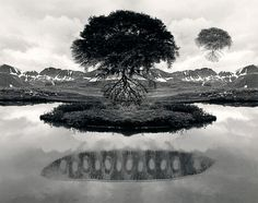 Fascinating NYT interview with photographer, Jerry Uelsmann. Before Photoshop allowed image makers to bend reality to their will with a single keystroke there was Jerry Uelsmann. Jerry Uelsmann, Photomontage, Digital Photography, Fine Art Photography, White Photography, Photography Hacks, Popular Photography, Inspiring Photography, Photography Gallery