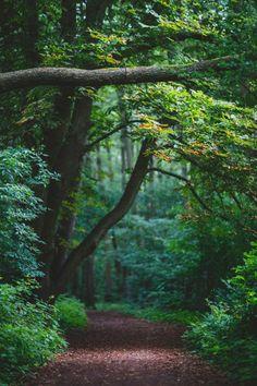 Se connecter à la nature, c'est ce que connecter à soi-même ....nous faisons partie de la nature et la nature est en nous....Respectons nous en respectant la nature. Ginou du site http://sophrologieginou.com