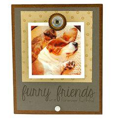 Furry Friends Insta Magnet Frame | Pet Frame, Instagram Frame, Handmade, Gift…