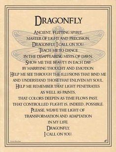 Spirit Totem Animals:  Dragonfly.
