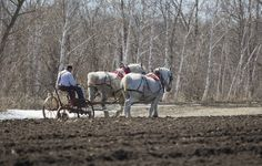 Spring Plowing by Roger Dullinger