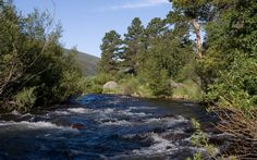 Rocky Mountain National Park Lodging | Fishing in Rocky Mountain National Park | Wild Basin Lodge