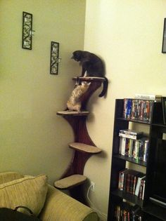 """Corner Climbing Cat Tree Tower For Active Kitties, 68"""" high with stepped ,cushioned platforms . Real Wood."""