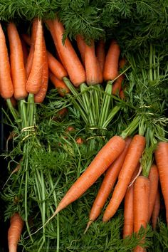 My least favourite veg - prefer it raw to cooked! Fruit And Veg, Fruits And Vegetables, Farmers Market Recipes, Aesthetic Food, Healthy Foods To Eat, Food Pictures, Food Styling, Food Art, Food Photography