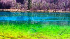 Lago Five Flower, Vale Jiuzhaigou , China