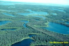 Potentially 'catastrophic' changes underway in Canada's northern Mackenzie River Basin: report