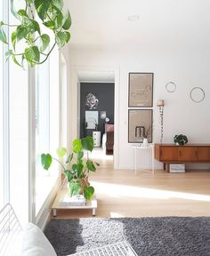 We are loving the spring light, green plants and Artek's posters in beautiful home. New Nordic, Light Spring, Nordic Design, Green Plants, Queen Anne, Beautiful Homes, Gallery Wall, Living Room, Furniture