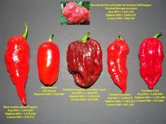 Very Hot Peppers