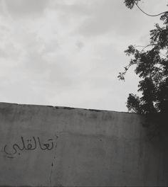 Marwa Abdullah : Photo