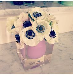 Anemones for table centrepiece's