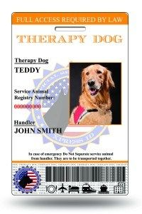 Holographic Therapy Dog ID Card Vertical -- Find out more about the great product at the image link. (This is an affiliate link and I receive a commission for the sales) Service Dog Training, Service Dogs, Id Card Template, Card Templates, Emotional Support Animal, Dog Cards, Dog Diapers, Dog Id Tags, Therapy Dogs