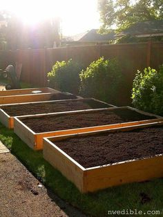 Planting on raised garden beds brings many benefits compared to planting on the ground. But the most crucial one is you can grow a garden even in a Vegetable Garden For Beginners, Backyard Vegetable Gardens, Vegetable Garden Design, Building Raised Garden Beds, Raised Beds, Growing Herbs, Growing Vegetables, Growing Tomatoes, Garden Design Plans