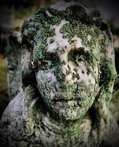 Grave monument covered in lichen at Laurel Grove Cemetery in Savannah, GA.  Photo by Bella Soul Photography