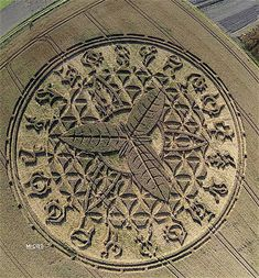 """""""The massive crop circle is a humongous 300-foot figure that occupies two acres of land and features a number of mysterious symbols that according to researchers are TWENTY astrological symbols adorning its edges…""""  While the mysterious"""