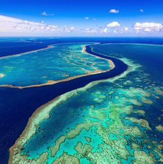 The Great Barrier Reef, Queensland, Australia. When your entire field of view…