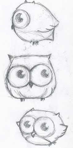These owls are so adorable, and owls are one of my favorite birds!