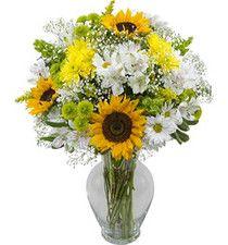 w sunflowers