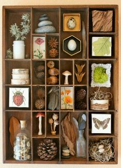 This is an Assemblage of found woodland and forest items. It is all contained in a vintage wood compartment box probably used for wood type The post Found Objects Assemblage Art Organized Nature appeared first on Easy Crafts. Instagram Challenge, Nature Table, Assemblage Art, Nature Crafts, Nature Decor, Bird Crafts, Frame Crafts, Displaying Collections, Vintage Wood