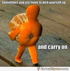 Coolest+orange+carrying+itself+and+just+walking