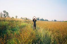 summerland: Golden Afternoon