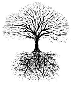 An oak tree and roots, grunge style. Silhouette Tattoos, Tree Silhouette, Roots Drawing, Bonsai Tree Tattoos, Tree Roots Tattoo, Tree Clipart, Celtic Tree Of Life, Tree Images, Tree Illustration