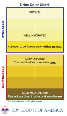 Trust the Boy Scouts to produce a nice graphic to gauge dehydration. I will use this when discussing dehydration induced pseduo-dementia.
