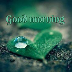 Morning Love, Good Morning Coffee, Good Morning Wishes, Good Morning Quotes, Morning Pictures, Morning Pics, Good Morning Beautiful Images, Good Morning Wallpaper, Night